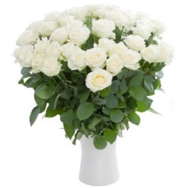 Just White Roses