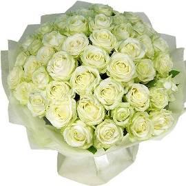 51 Extra-large White Roses