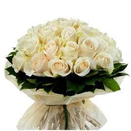 White Glory Roses