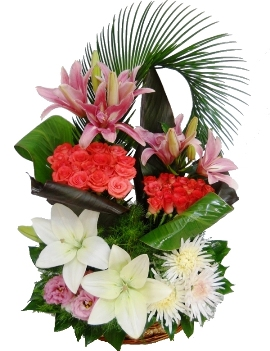 Fragrant Blooms